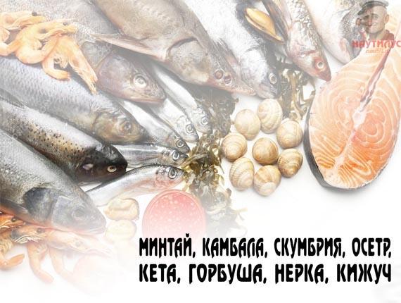 Купить рыбы свежемороженную оптом