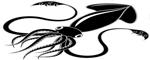 Кальмары в Новосибирске
