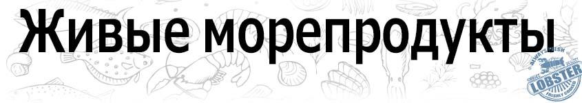Доставка живых морепродуктов по городам РФ. Доставка живого краба, мидий, живых гребешков, живых устриц